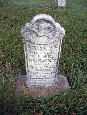 BUSSEY, LARENE - Bremer County, Iowa | LARENE BUSSEY