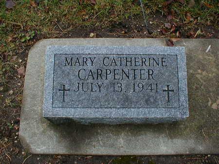 CARPENTER, MARY CATHERINE - Bremer County, Iowa | MARY CATHERINE CARPENTER