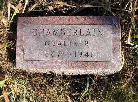 CHAMBERLAIN, NEALIE B - Bremer County, Iowa | NEALIE B CHAMBERLAIN