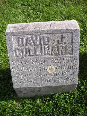 CULLINANE, DAVID J - Bremer County, Iowa   DAVID J CULLINANE