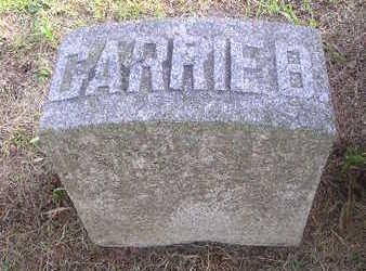 DICKEN, CARRIE B - Bremer County, Iowa | CARRIE B DICKEN