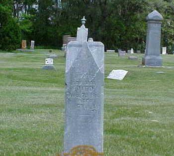 EDWARDS, JOHN JAMES - Bremer County, Iowa | JOHN JAMES EDWARDS