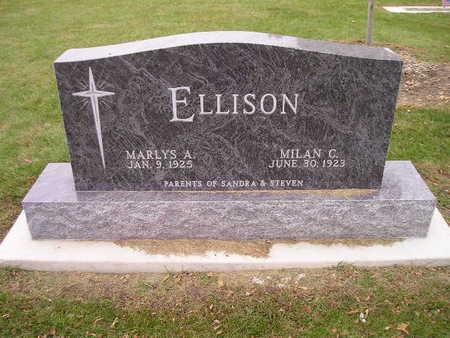 ELLISON, MARLYS A - Bremer County, Iowa | MARLYS A ELLISON