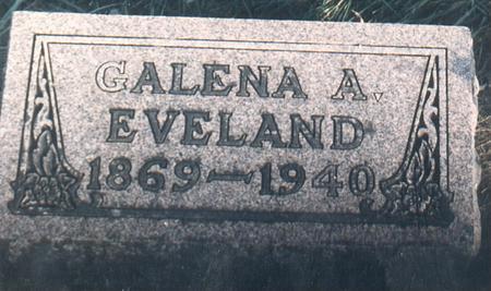 CHESTNUT EVELAND, GALENA - Bremer County, Iowa | GALENA CHESTNUT EVELAND