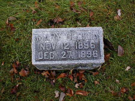 FOSSELMAN, MARY CECILIA - Bremer County, Iowa | MARY CECILIA FOSSELMAN