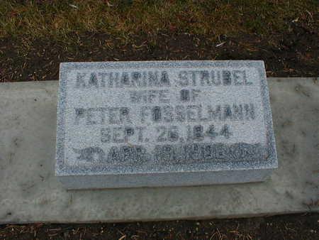 STRUBEL FOSSELMANN, KATHARINA - Bremer County, Iowa | KATHARINA STRUBEL FOSSELMANN