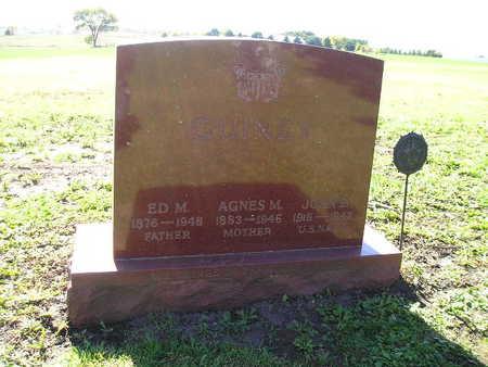 GUINEY, AGNES M - Bremer County, Iowa | AGNES M GUINEY