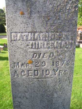 HIRLEMAN, CATHARINE A - Bremer County, Iowa | CATHARINE A HIRLEMAN
