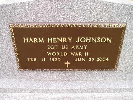 JOHNSON, HARM HENRY - Bremer County, Iowa | HARM HENRY JOHNSON