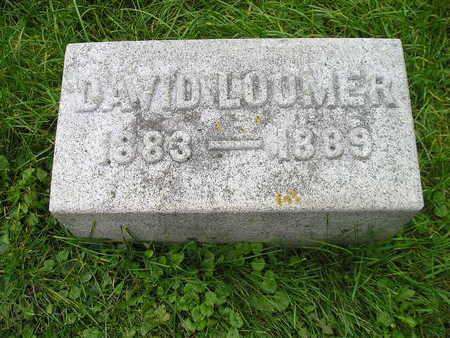 LOOMER, DAVID - Bremer County, Iowa   DAVID LOOMER