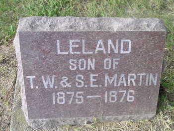 MARTIN, LELAND - Bremer County, Iowa | LELAND MARTIN