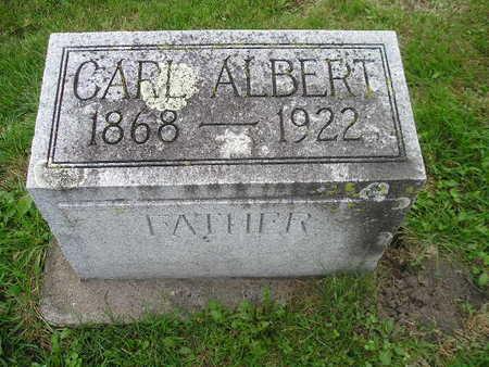 METHFESSEL, CARL ALBERT - Bremer County, Iowa | CARL ALBERT METHFESSEL
