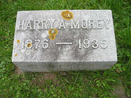 MOREY, HARRY A - Bremer County, Iowa | HARRY A MOREY