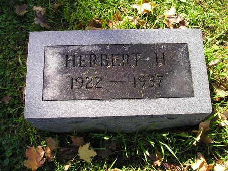 NASSEN, HERBERT H - Bremer County, Iowa | HERBERT H NASSEN