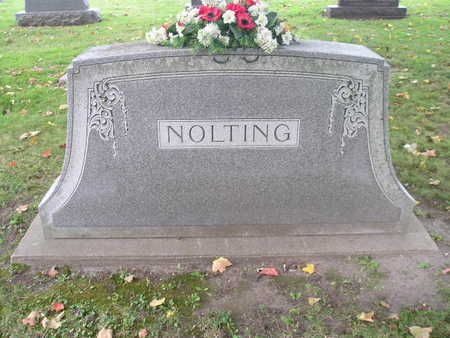 NOLTING, FAMILY - Bremer County, Iowa | FAMILY NOLTING
