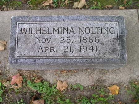 NOLTING, WILHELMINA - Bremer County, Iowa | WILHELMINA NOLTING
