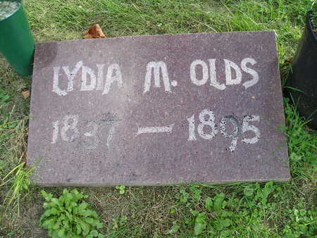 OLDS, LYDIA M - Bremer County, Iowa | LYDIA M OLDS
