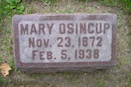 OSINCUP, MARY - Bremer County, Iowa | MARY OSINCUP