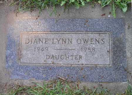 OWENS, DIANE LYNN - Bremer County, Iowa | DIANE LYNN OWENS