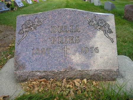 PRIES, DELIA - Bremer County, Iowa | DELIA PRIES