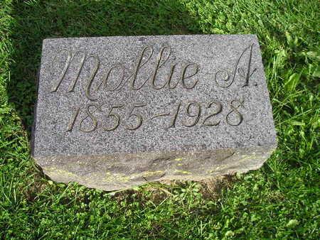 SCHLUTSMEYER, MOLLIE A - Bremer County, Iowa   MOLLIE A SCHLUTSMEYER