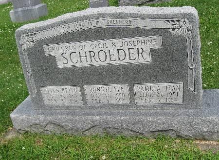 SCHROEDER, PAMELA JEAN - Bremer County, Iowa | PAMELA JEAN SCHROEDER