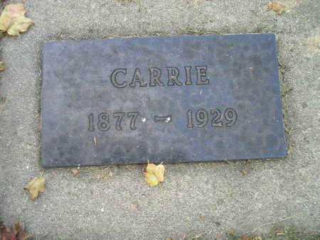 SCHROEDERMEIER, CARRIE - Bremer County, Iowa | CARRIE SCHROEDERMEIER