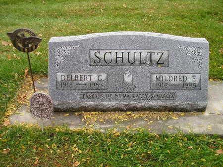 SCHULTZ, DELBERT C - Bremer County, Iowa   DELBERT C SCHULTZ