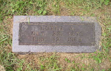 SHELDON, LOTTIE A. - Bremer County, Iowa | LOTTIE A. SHELDON