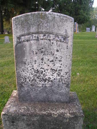 SHEPARD, DANIEL - Bremer County, Iowa | DANIEL SHEPARD