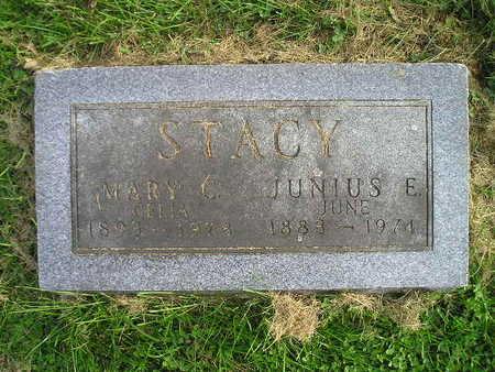 STACY, JUNIUS E - Bremer County, Iowa   JUNIUS E STACY