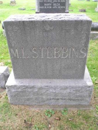 STEBBINS, ML - Bremer County, Iowa   ML STEBBINS
