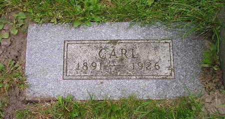 STEEGE, CARL - Bremer County, Iowa | CARL STEEGE