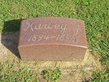 THIES, HARVEY J. - Bremer County, Iowa   HARVEY J. THIES