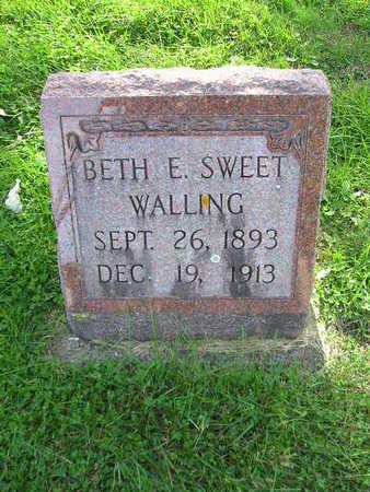 WALLING, BETH E - Bremer County, Iowa | BETH E WALLING