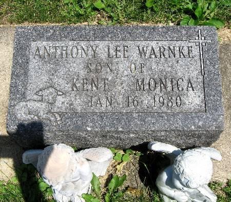 WARNKE, ANTHONY LEE - Bremer County, Iowa   ANTHONY LEE WARNKE