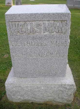 WELLSMAN, CHARLES W - Bremer County, Iowa | CHARLES W WELLSMAN