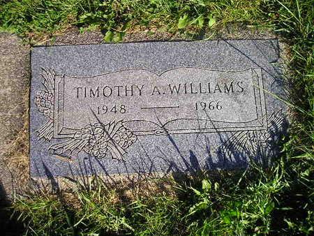 WILLIAMS, TIMOTHY A - Bremer County, Iowa   TIMOTHY A WILLIAMS