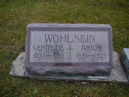 WOHLSEIN, GERTRUDE - Bremer County, Iowa | GERTRUDE WOHLSEIN