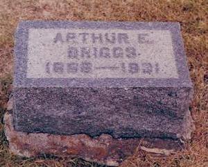 BRIGGS, ARTHUR - Buchanan County, Iowa   ARTHUR BRIGGS