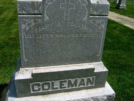 COLEMAN, MARY A. - Buchanan County, Iowa | MARY A. COLEMAN