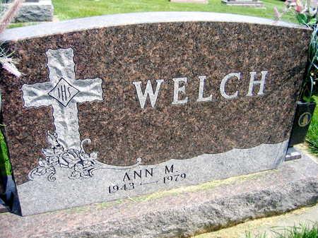 WELCH, ANN M. - Buchanan County, Iowa   ANN M. WELCH