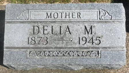 DANIELSON ANDERSON, DELIA M. - Buena Vista County, Iowa   DELIA M. DANIELSON ANDERSON