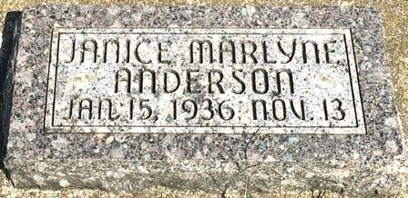 ANDERSON, JANICE MARLYNE - Buena Vista County, Iowa   JANICE MARLYNE ANDERSON