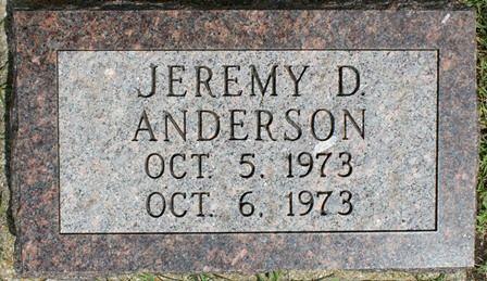 ANDERSON, JEREMY D. - Buena Vista County, Iowa   JEREMY D. ANDERSON