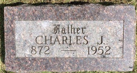 HIX, CHARLES J. - Buena Vista County, Iowa | CHARLES J. HIX