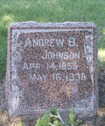 JOHNSON, ANDREW B. - Buena Vista County, Iowa   ANDREW B. JOHNSON
