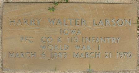 LARSON, HARRY WALTER - Buena Vista County, Iowa | HARRY WALTER LARSON
