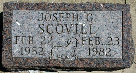 SCOVILL, JOSEPH G. - Buena Vista County, Iowa | JOSEPH G. SCOVILL