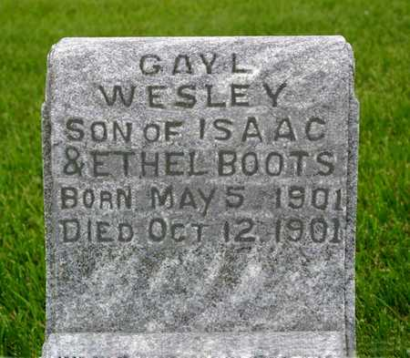 BOOTS, GAYL  WESLEY - Butler County, Iowa | GAYL  WESLEY BOOTS